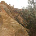 Fraser Island 1872