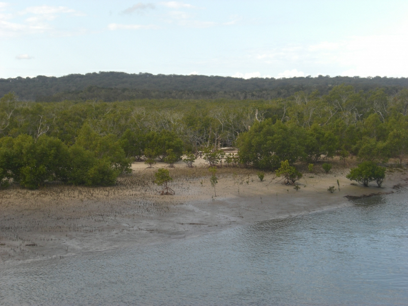 Fraser Island 1949