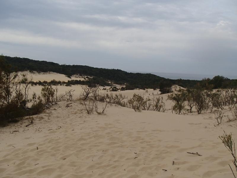 Fraser Island 9280064