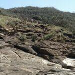 Fraser Island 9290074