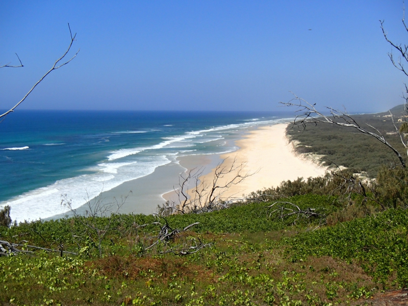 Fraser Island 9290076