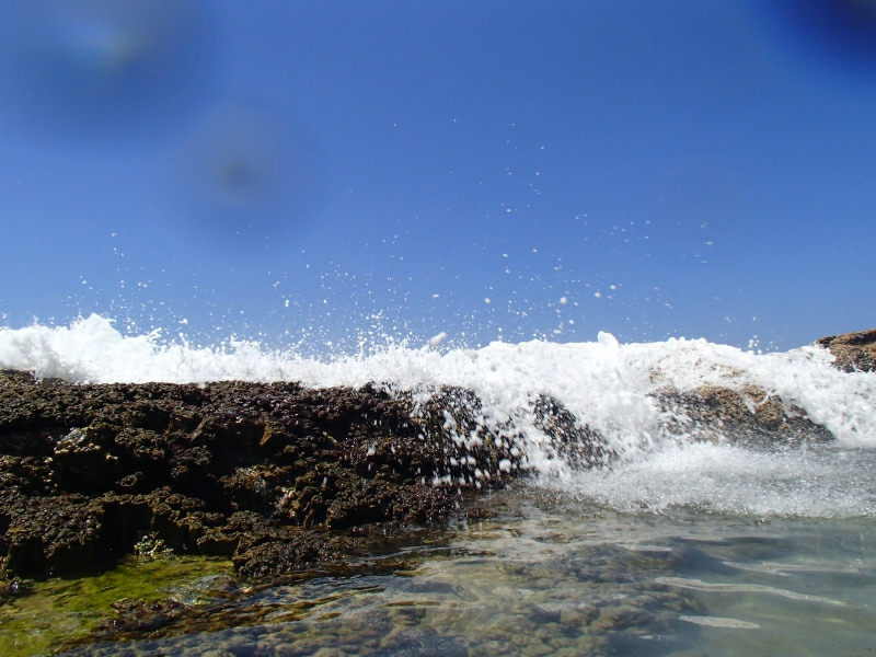 Fraser Island 9290090