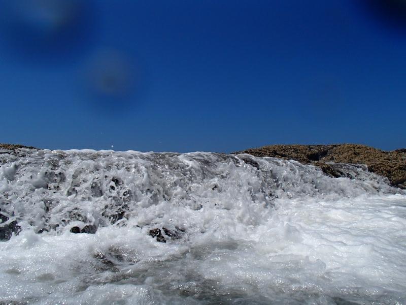 Fraser Island 9290091