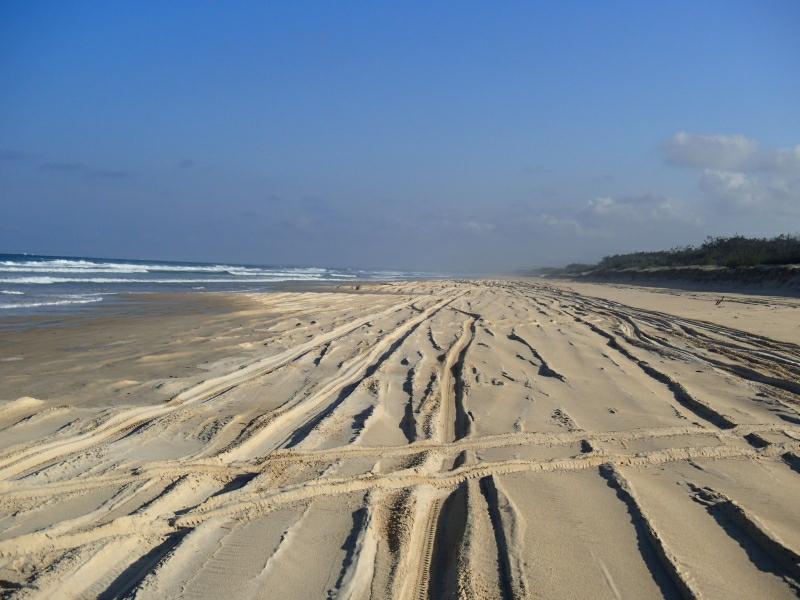 Fraser Island 9300150