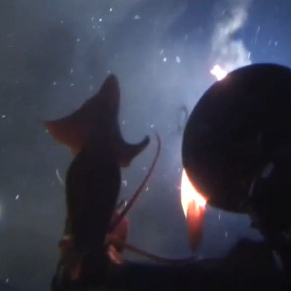 Riesenkrake greift Greenpeace U-Boot an