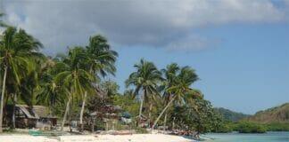 Palawan Strand Schnorcheln 2060106