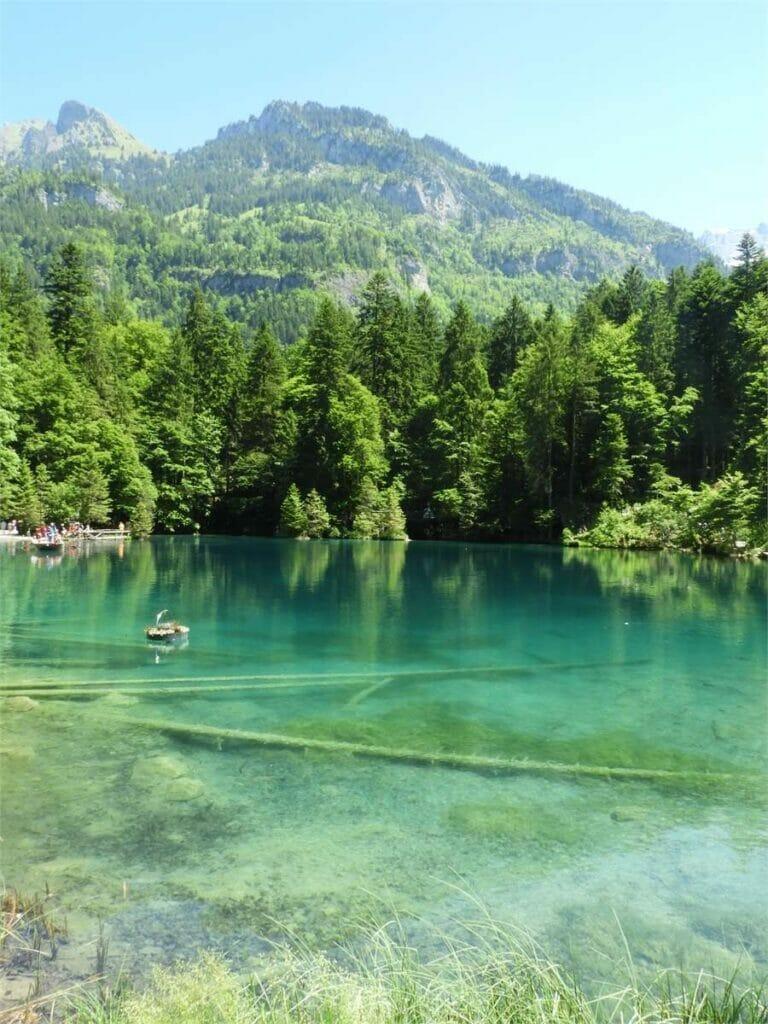 Ausflug in den Naturpark Blausee (Schweiz)