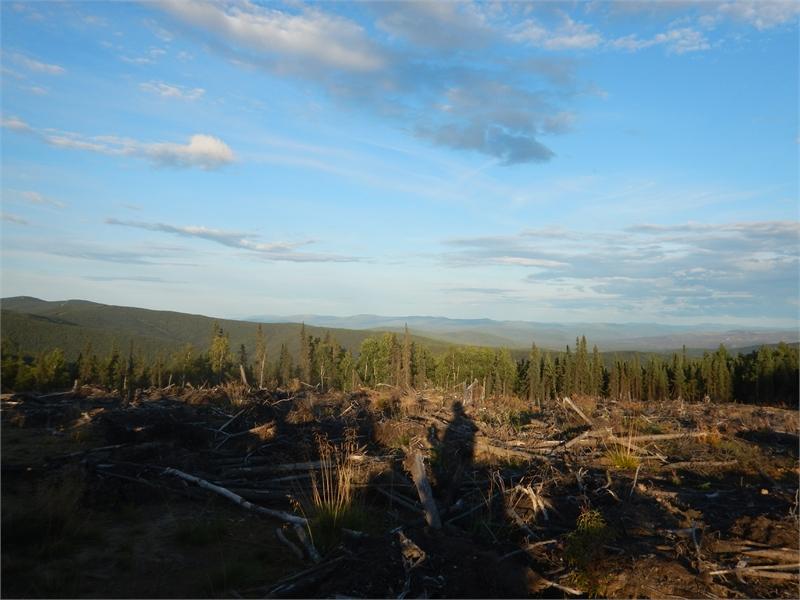 Fairbanks ATV Tour 070222 1280