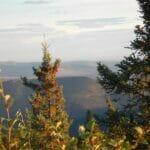 Fairbanks ATV Tour 075228 1338