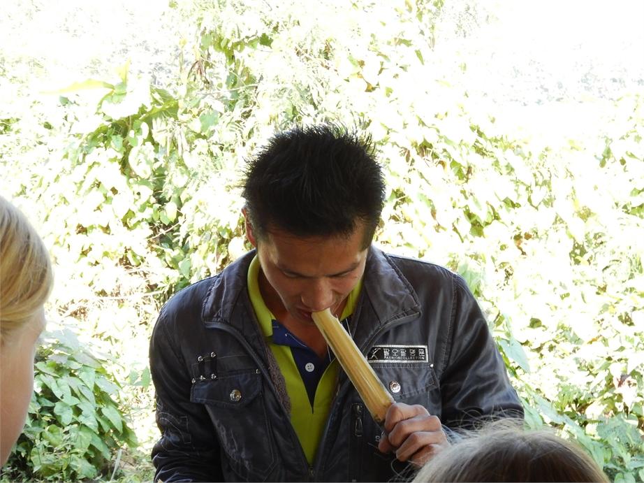 laos luang prabang elefanten 0041