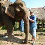 laos luang prabang elefanten 0043