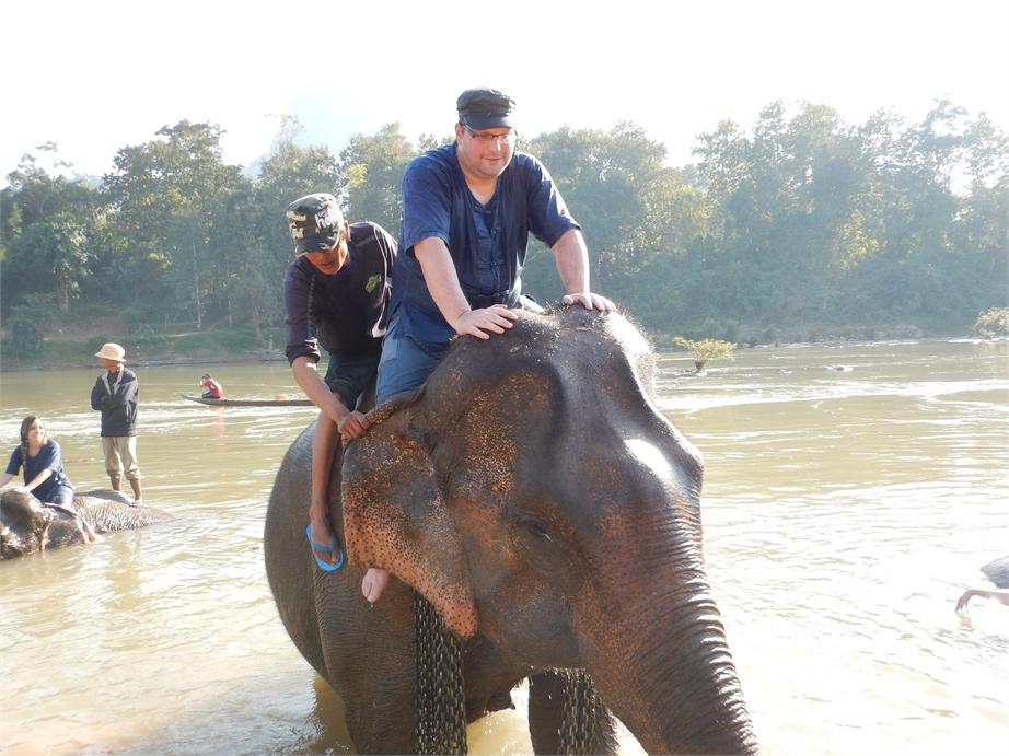 laos luang prabang elefanten 0076
