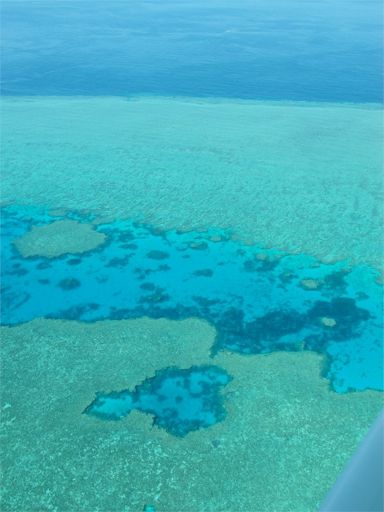 whitsunday islands flug korallenriff 0495