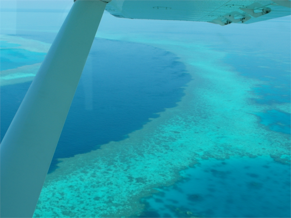 whitsunday islands flug korallenriff 0504