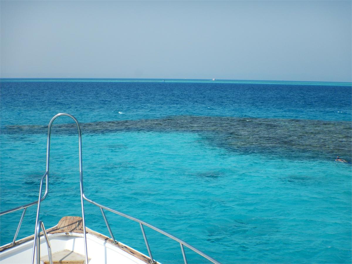 Schwimmen mit Delfinen Hurghada 1971