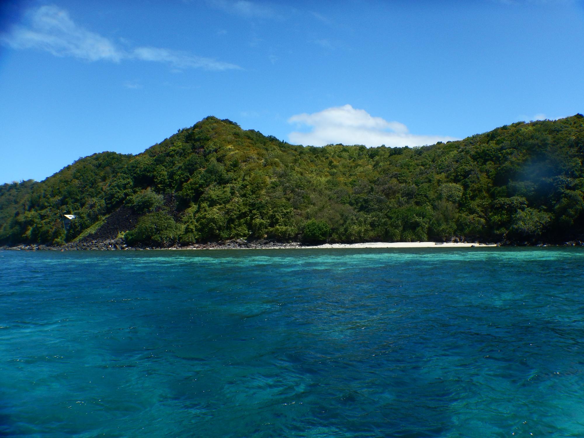 Apo Island Philippinen Titelbild