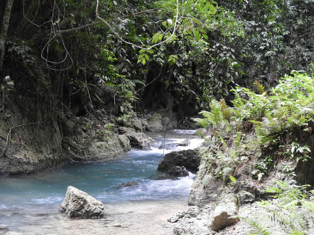 Spaziergang zum Wasserfall