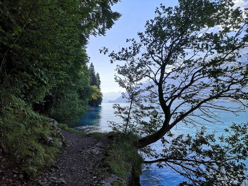 Wanderung Iseltwald - Giessbachfälle