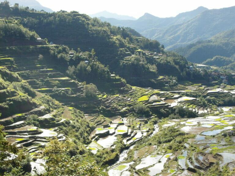 Die Reisterrassen von Banaue (Philippinen)